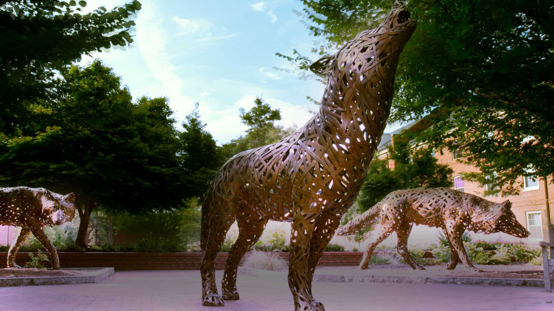 Howling wolf statues